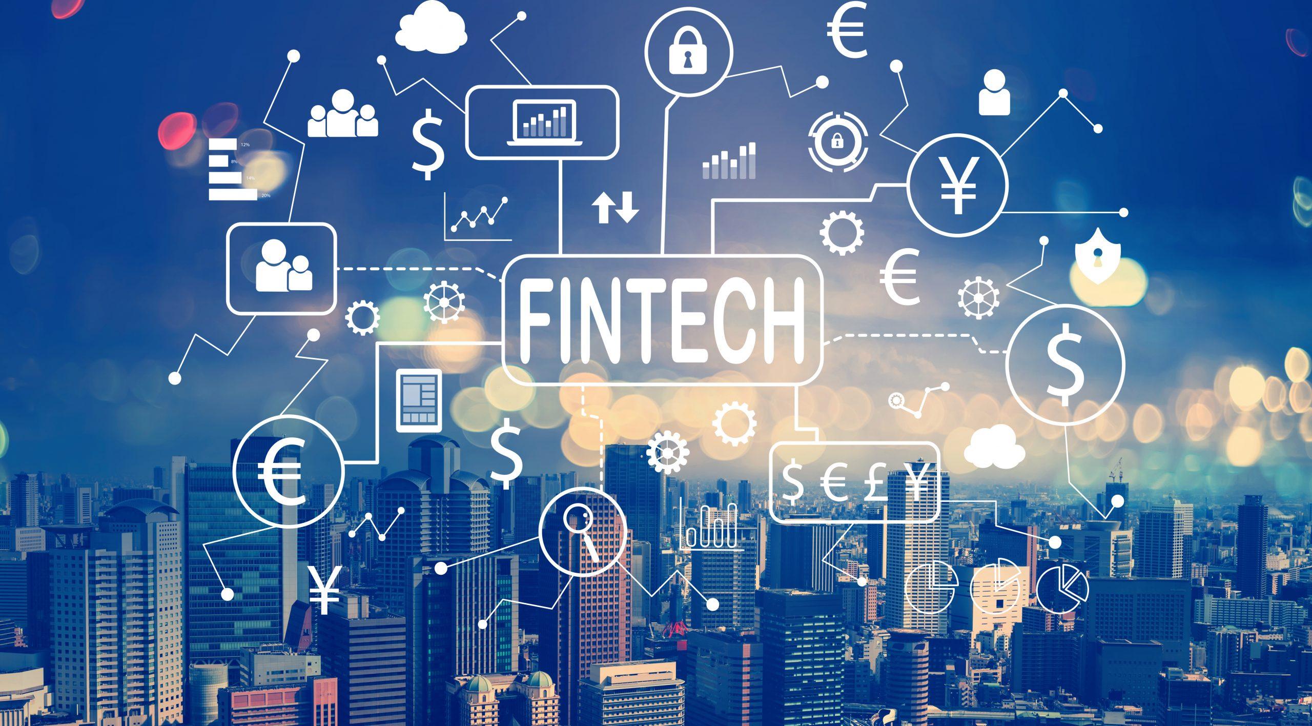 N'Gunu Tiny- Fintech skyrocket 2020
