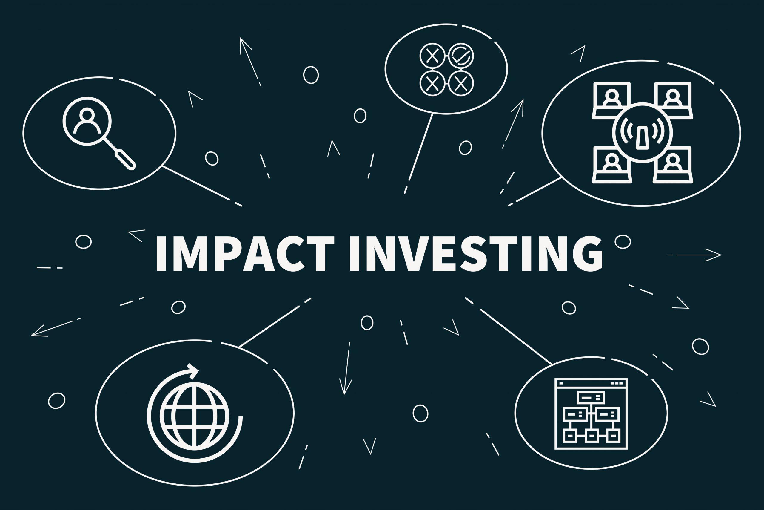 N'Gunu Tiny - impact investing